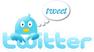 twitter bird graphic